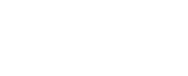 Gestion Revenue